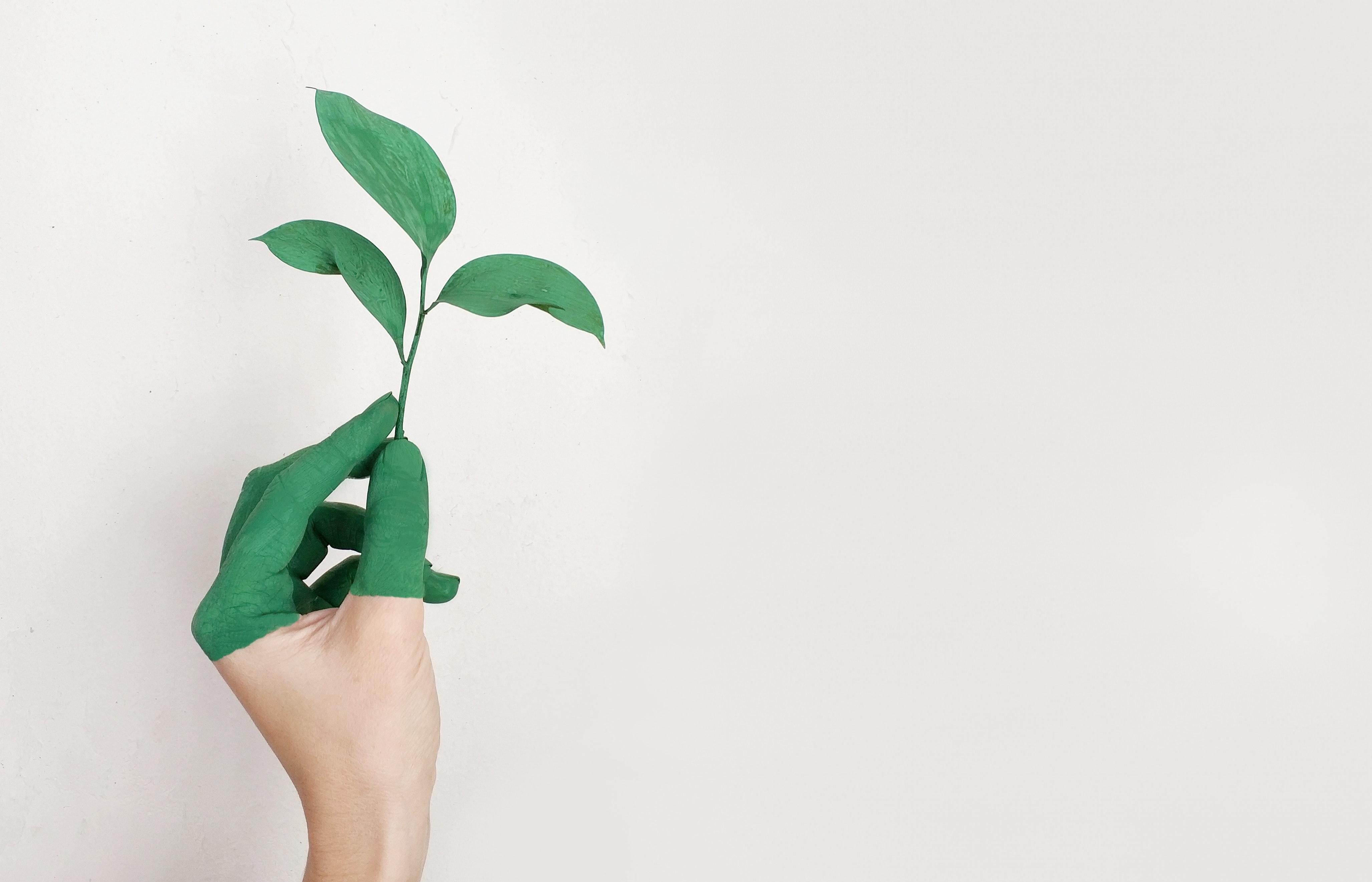 Sustentabilidade nos empreendimentos imobiliários