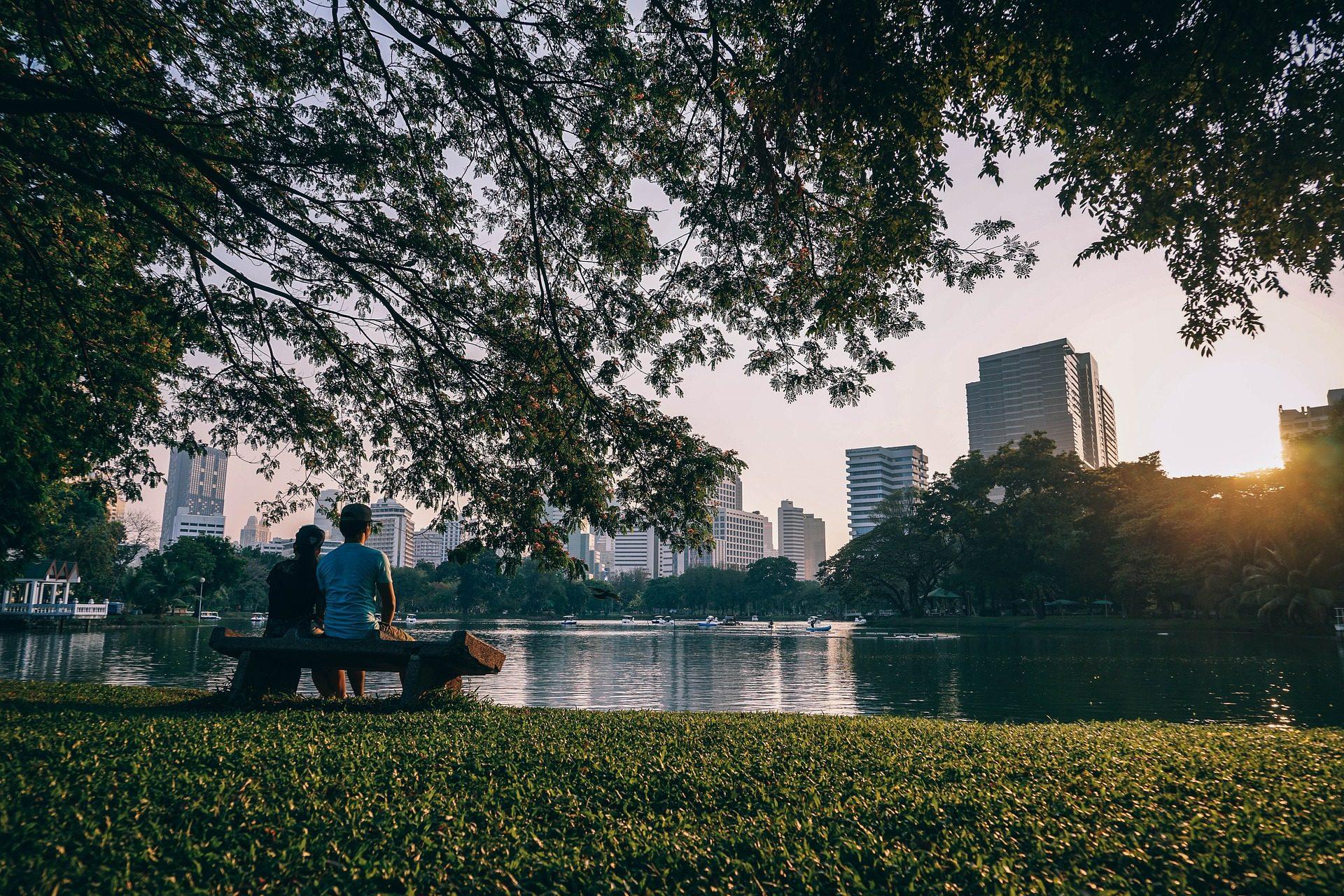 Morar perto da natureza traz benefícios para você