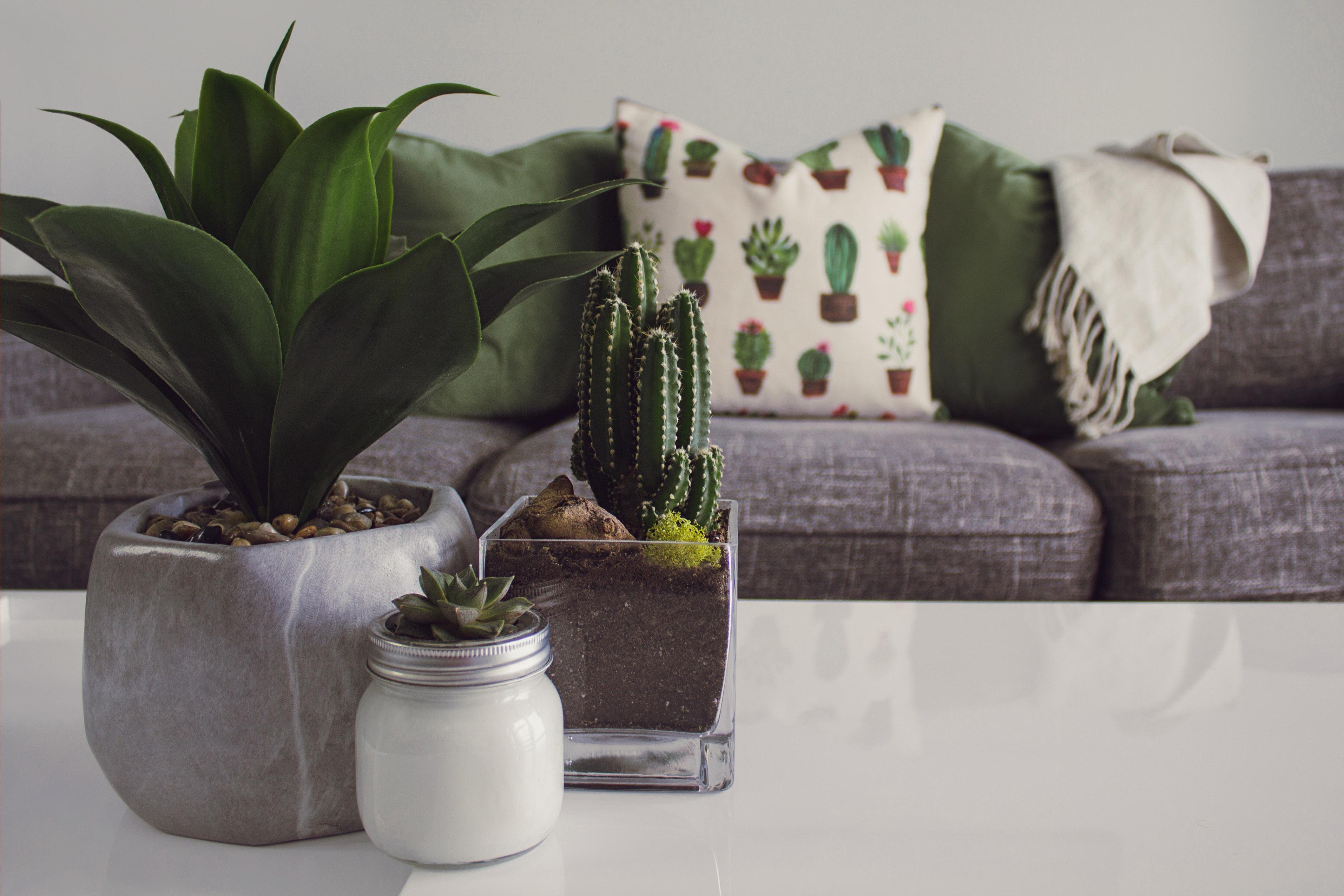5 dicas simples para dar um up na decoração da sua casa