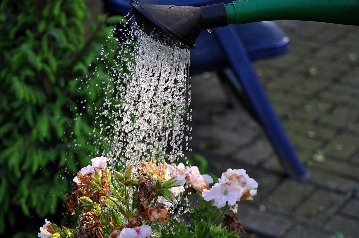 Reaproveitamento da água da chuva: tendência presente nas obras da C2B